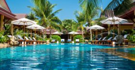 resort pool with palm trees
